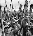 trabalhadores-rurais2