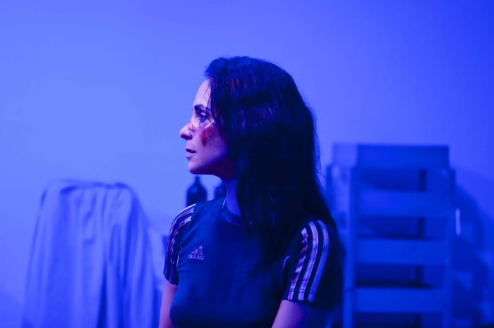 Cena -OOrgulhoDaRuaParnell -ClaudianeCarvalho -foto de Eliana Souza -b